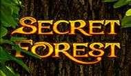 Игровой автомат Secret Forest бесплатно онлайн